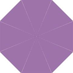 Uva Purple Hook Handle Umbrellas (medium)