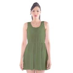 Earth Green Scoop Neck Skater Dress
