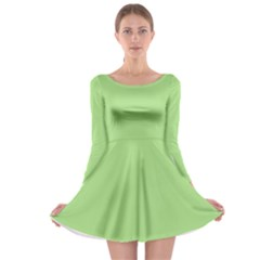 Pistachio Taste Long Sleeve Skater Dress