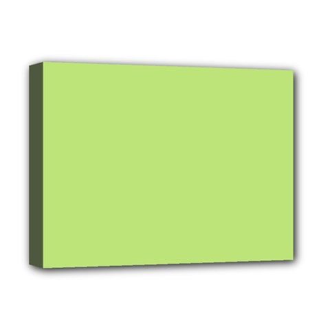 Minty Deluxe Canvas 16  X 12