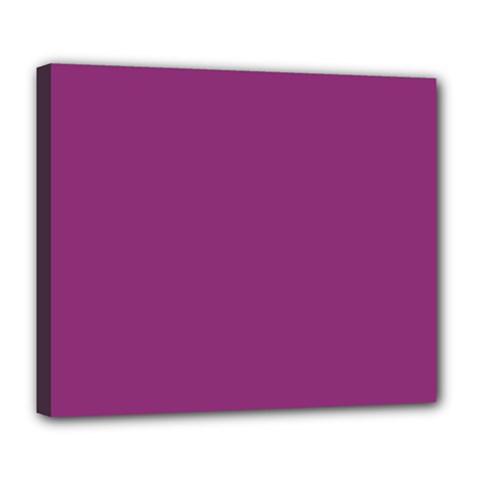 Grape Purple Deluxe Canvas 24  X 20