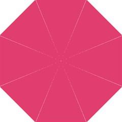 Rosey Day Hook Handle Umbrellas (medium)