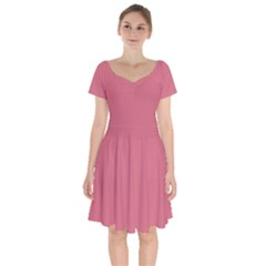 Rosey Short Sleeve Bardot Dress