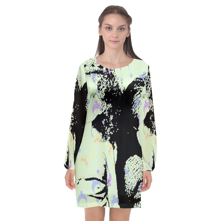 Mint Wall Long Sleeve Chiffon Shift Dress