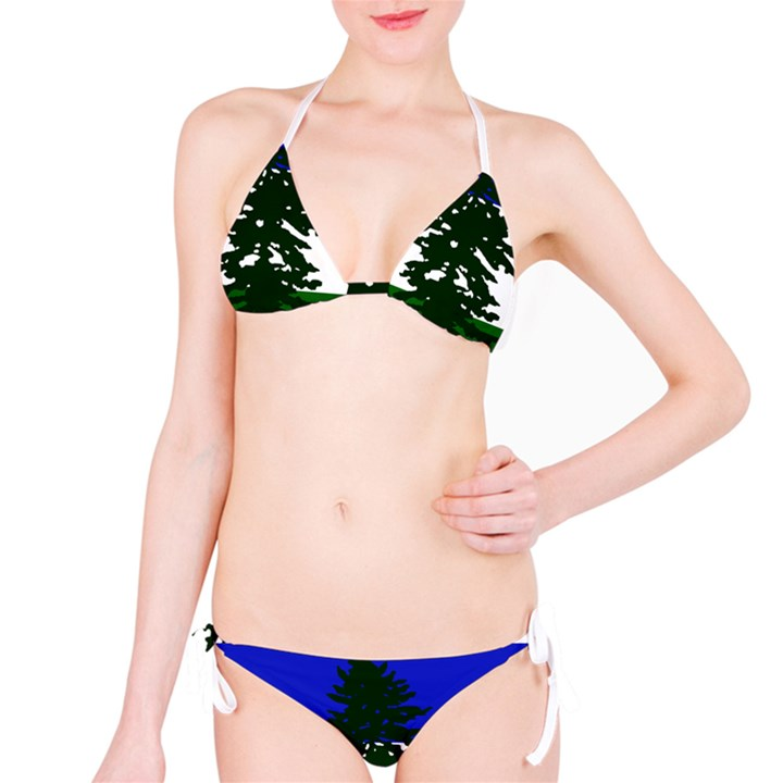 Flag of Cascadia Bikini Set