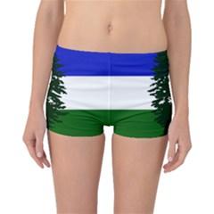 Flag Of Cascadia Boyleg Bikini Bottoms