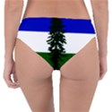 Flag of Cascadia Reversible Classic Bikini Bottoms View4