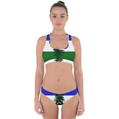 Flag Of Cascadia Cross Back Hipster Bikini Set