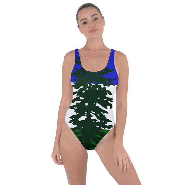 Flag of Cascadia Bring Sexy Back Swimsuit
