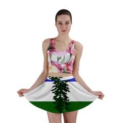 Flag Of Cascadia Mini Skirt