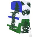 Flag of Cascadia Full Print Backpack View3
