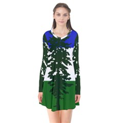 Flag Of Cascadia Flare Dress