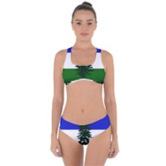 Flag Of Cascadia Criss Cross Bikini Set