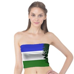Flag Of Cascadia Tube Top