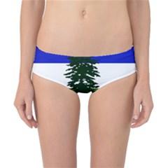 Flag Of Cascadia Classic Bikini Bottoms