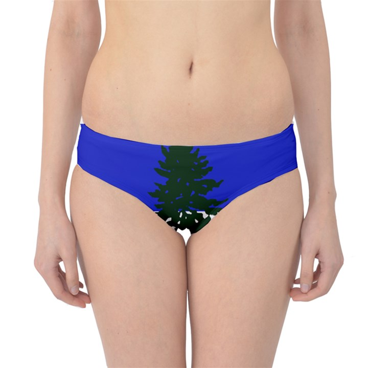 Flag of Cascadia Hipster Bikini Bottoms
