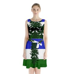 Flag Of Cascadia Sleeveless Waist Tie Chiffon Dress