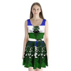 Flag Of Cascadia Split Back Mini Dress