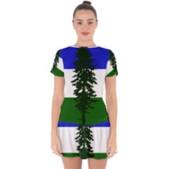 Flag Of Cascadia Drop Hem Mini Chiffon Dress