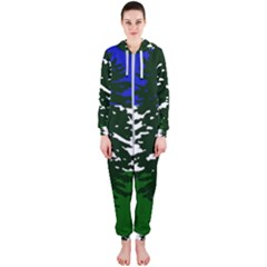 Flag 0f Cascadia Hooded Jumpsuit (ladies)