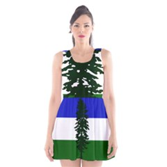 Flag 0f Cascadia Scoop Neck Skater Dress