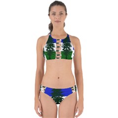 Flag 0f Cascadia Perfectly Cut Out Bikini Set