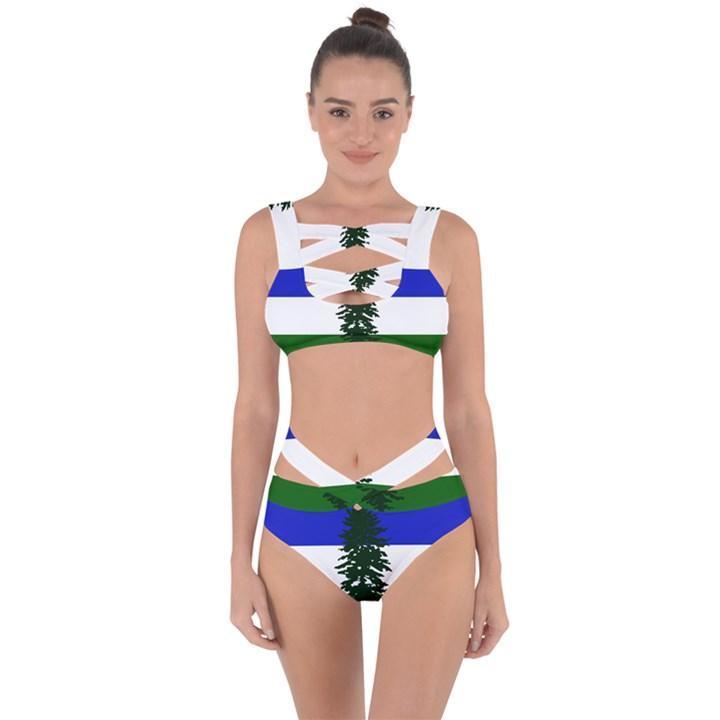 Flag 0f Cascadia Bandaged Up Bikini Set
