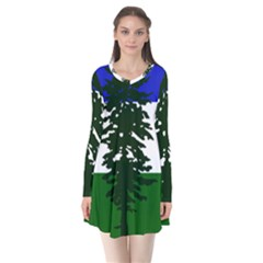 Flag 0f Cascadia Flare Dress