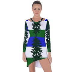 Flag 0f Cascadia Asymmetric Cut Out Shift Dress