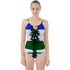 Flag 0f Cascadia Cut Out Top Tankini Set