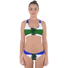 Flag 0f Cascadia Cross Back Hipster Bikini Set