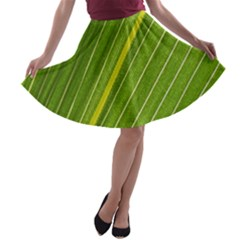 Leaf Plant Nature Pattern A Line Skater Skirt
