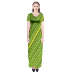 Leaf Plant Nature Pattern Short Sleeve Maxi Dress