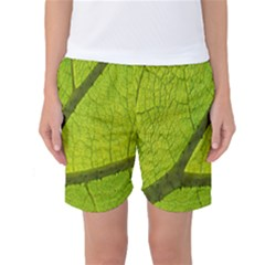 Green Leaf Plant Nature Structure Women s Basketball Shorts