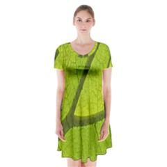 Green Leaf Plant Nature Structure Short Sleeve V Neck Flare Dress