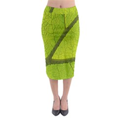 Green Leaf Plant Nature Structure Midi Pencil Skirt