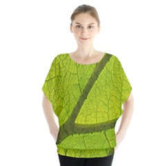 Green Leaf Plant Nature Structure Blouse