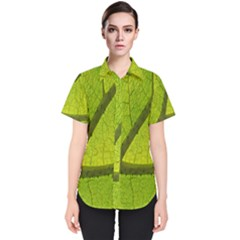 Green Leaf Plant Nature Structure Women s Short Sleeve Shirt