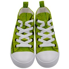 Green Leaf Plant Nature Structure Kid s Mid Top Canvas Sneakers