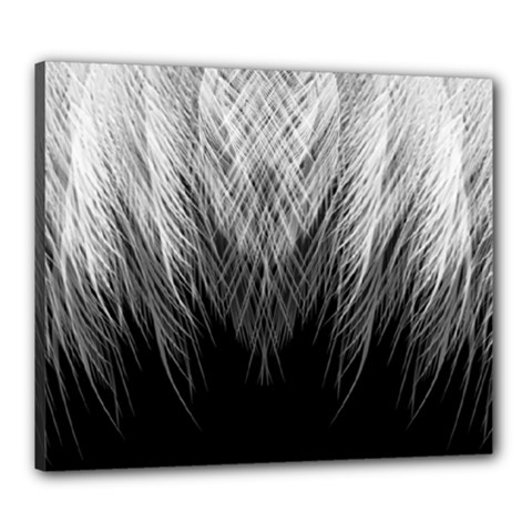 Feather Graphic Design Background Canvas 24  X 20