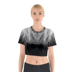 Feather Graphic Design Background Cotton Crop Top