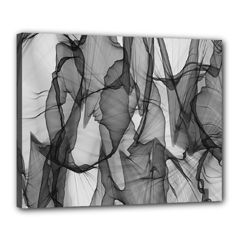 Abstract Black And White Background Canvas 20  X 16