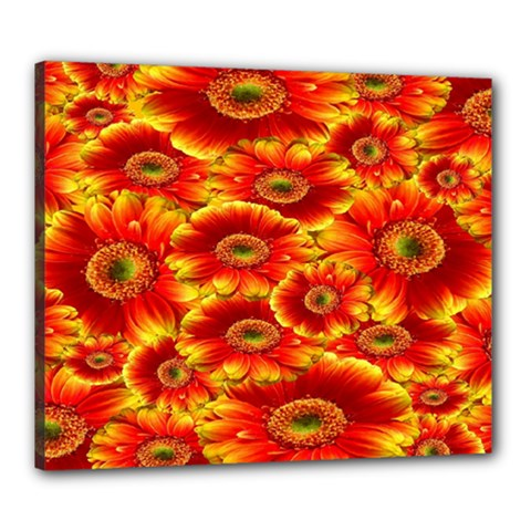 Gerbera Flowers Nature Plant Canvas 24  X 20
