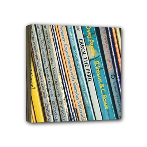 Bookcase Books Data Education Mini Canvas 4  X 4