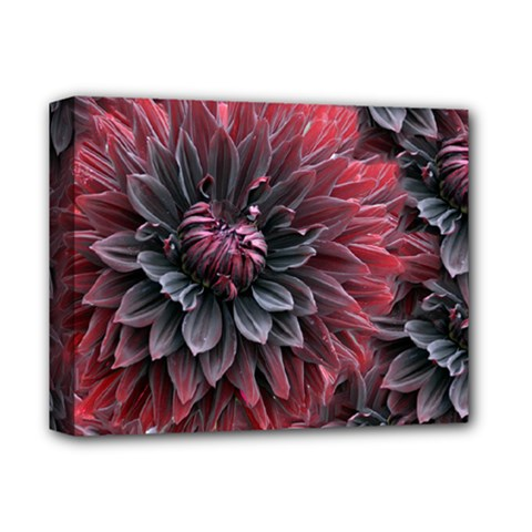 Flower Fractals Pattern Design Creative Deluxe Canvas 14  X 11