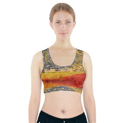 The Framework Drawing Color Texture Sports Bra With Pocket