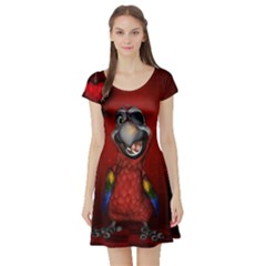 Funny, Cute Parrot With Butterflies Short Sleeve Skater Dress