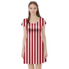 Red Stripes Short Sleeve Skater Dress