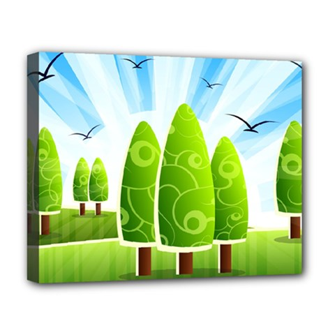 Landscape Nature Background Deluxe Canvas 20  X 16