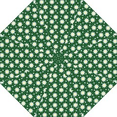 Daisy Dots Green Hook Handle Umbrellas (large)